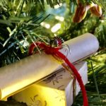 At Christmas, you'll find decorations and holiday splendor