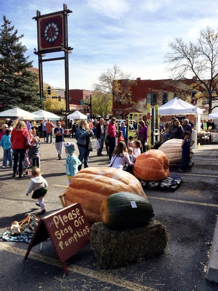 great giant pumpkin contest and scarecrow days in old colorado